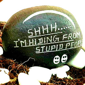 Stupid People, Pebble Art Handcrafted Garden and Room Décor for Home by NationBloom