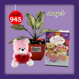 Angel Set - Express Your Love With Amazing Green Gift Set