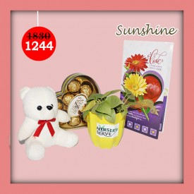 Sunshine Set - Express Your Love With Amazing Green Gift Set
