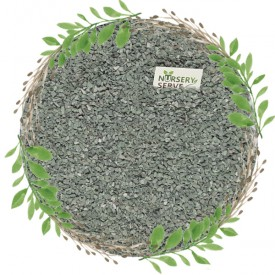 Grey Natural Chips Pebbles Small, Unpolished 1 KG