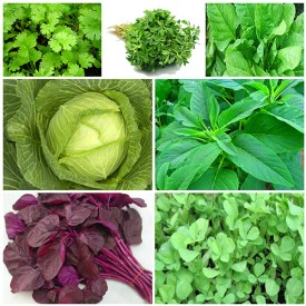 Set of 7 Green Vegetable Seeds Used in Indian Cooking