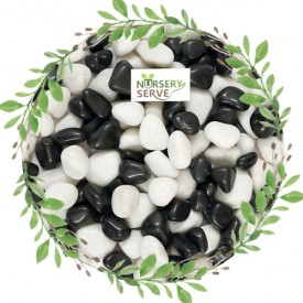 Super Glossy Black and White Mix Pebbles Marble Polished, Medium Size 1Kg